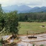 Sri Lanka 1985 - Foto von Susanne Haun