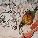 Entstehung Hagebutte - Zeichnung von Susanne Haun - 20 x 20 cm - Tusche auf Bütten