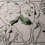 Entstehung 2 Hagebutte - Zeichnung von Susanne Haun - 22 x 17 cm - Tusche auf Bütten