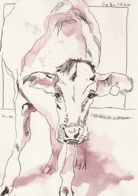Kuh - Zeichnung von Susanne Haun - 22 x 17 cm - Tusche auf Bütten
