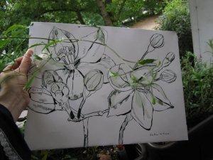 Ich auf meinem Balkon mit Jasmin und meiner Zeichnung