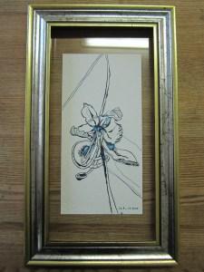 Blume in maurizius blau - Zeichnung von Susanne Haun - gerahmt - Tusche auf Bütten
