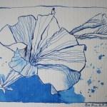 Hibiskus - Zeichnung von Susanne Haun - Tusche auf Bütten - 17 x 22 cm