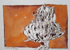 Verblühte Tagetes - Zeichnung von Susanne Haun - 17 x 22 cm - Tusche auf Bütten