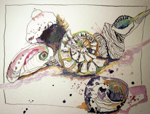 Muscheln - Version II - Zeichnung von Susanne Haun - 24 x 32 cm - Tusche und Buntstift auf Bütten
