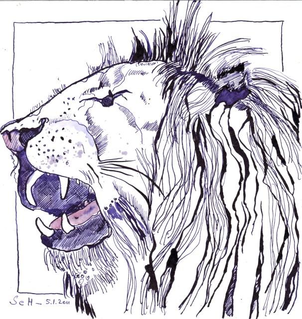 Löwe - Zeichnung von Susanne Haun - 20 x 20 cm - Tusche auf Bütten