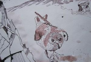 Ein Strandläufer hat wahrscheinlich wenig in der irischen Ebene zu suchen - Ausschnitt Zeichnung von Susanne Haun