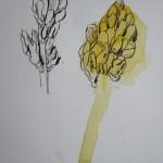 Ich arbeite an beiden Blüten gleichzeitig - Susanne Haun