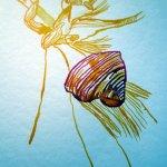Die Tulpenblätter rollen sich - Susanne Haun