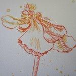 Ich zeichne die einzelnen Blüten stark vergrößert - Susanne Haun