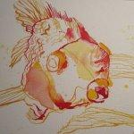 Merkwürdige Wesen diese Goldfische! - Susanne Haun