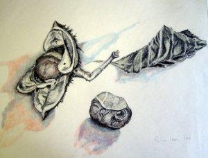 Kastanien - Zeichnung von Susanne Haun - 70 x 50 cm - Blei- und Buntstift auf Papier