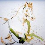 Entstehung Pferd - Zeichnung von Susanne Haun 24 x 32 cm - Tusche auf Bütten