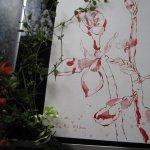 Ich habe mir die Blüten ausgesucht, die ich am schönsten zum zeichnen fand - Foto von Susanne Haun