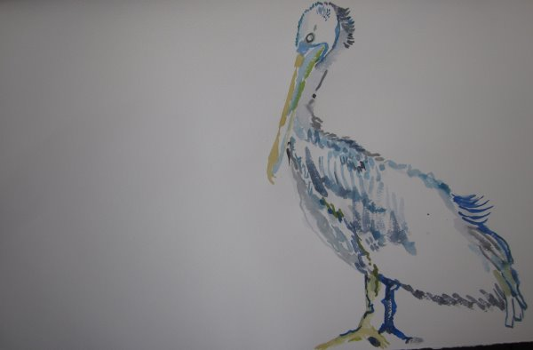 Entstehung Pelikan - Aquarell von Susanne Haun - 40 x 60 cm
