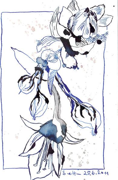 Jasmin - Zeichnung von Susanne Haun - 17 x 22 cm - Tusche auf Bütten