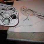 Die Schwalbe zeichne ich mit Sepia Tusche - für das Meer mische ich die Sepiatusche mit viel Wasser - Foto von Susanne Haun