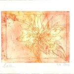 Blüte rot/gelb - Strichätzung von Susanne Haun - 15 x 20 cm