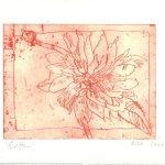 Blüte rot - Strichätzung von Susanne Haun - 15 x 20 cm