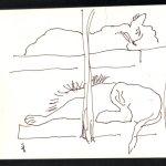 Schlafende Löwen - Skizze von Susanne Haun