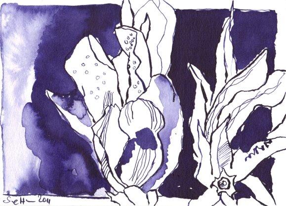 Herbstenzian Vers. 3 - Zeichnung von Susanne Haun - Tusche auf Bütten - 12 x 17 cm