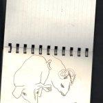 Skizzenbuch Susanne Haun: Schwein Vers. 2