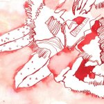 Nelke - Zeichnung von Susanne Haun - 12 x 17 cm - Tusche auf Bütten