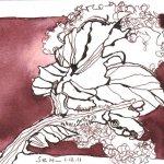Baumwolle I - Zeichnung von Susanne Haun - Tusche auf Hahnemühle Burgund - 12 x 17 cm