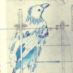 Beobachtung 3 Krähe - ÜberZeichnung von Susanne Haun - Tusche auf Bütten - 30 x 20 cm