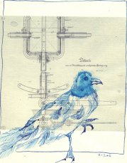 Beobachtung 1 Krähe - ÜberZeichnung von Susanne Haun - Tusche auf Bütten - 30 x 20 cm