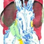 Kolorierter Esel Version 3 (c) Radierung von Susanne Haun