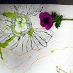 Entstehung Anemone (c) Zeichnung von Susanne Haun
