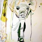 Ausschnitt Entstehung Elefant - Eldorado (c) Zeichnung von Susanne Haun