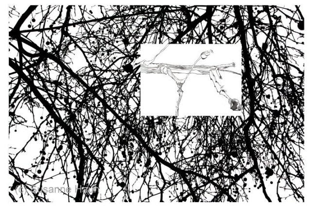 6 Gedanken IV Version II (c) Foto von Susanne Haun