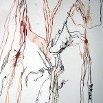 Ausschnitt 2. Rolle Ein wohlriechender Baum (c) Zeichnung von Susanne Haun