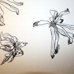 Verblühte Magnolien Detail 30 x 40 cm Tusche auf Bütten (c) Zeichnung von Susanne Haun