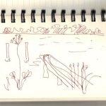Niederneuen Dorfer See (c) Skizze von Susanne Haun