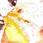 Orange Blüte 17 x 22 cm Tusche auf Bütten (c) Zeichnung von Susanne Haun