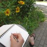 Ich nutze den Schattenstreifen zum Skizzieren (c) Foto von Susanne Haun