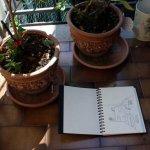 Gasse in Cesenatico (c) Skizze von Susanne Haun