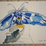 Insekt Version 1 30 x 40 cm Tusche auf Bütten (c) Zeichnung von Susanne Haun