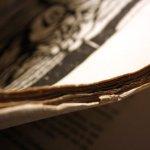 Die Seiten sind gerissen und nicht geschnitten (c) Foto von Susanne Haun