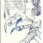 Blatt 15 Nachts wurde ich von Klauen zerrissen (c) Zeichnung von Susanne Haun