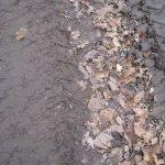 Spuren im Sand der B96 Version 2 (c) Foto von Susanne Haun