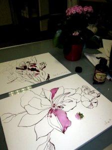 Zwei rosa Blüten (c) Foto und Zeichnung von Susanne Haun