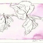 Laub Version 4 (c) Zeichnung von Susanne Haun