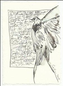 Blatt 64 Schwarzgeschriebene Seiten Vers. 2 (c) Zeichnung von Susanne Haun