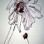 Entstehung verwelkte Primel (c) Zeichnung von Susanne Haun