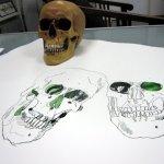 Entstehung - Eine Kette aus Totenschädeln (c) Zeichnung von Susanne Haun