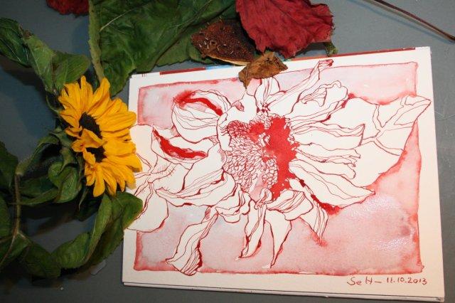 Die Geschichte von einer roten Sonnenblume (c) Foto von Susanne Haun